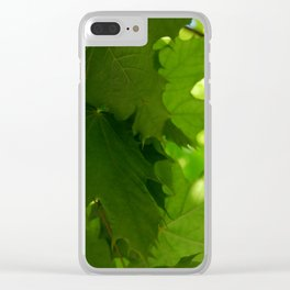 Close up of the leaves of a tree Clear iPhone Case
