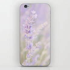 Lavanda iPhone & iPod Skin
