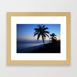 Palm Tree in Bahamian Sunset Framed Art Print