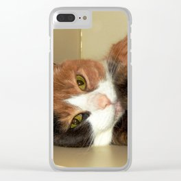 Want to take me home? Clear iPhone Case