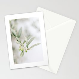 Rustic Olive Branch. Minimalistic print - fine art photography Stationery Cards