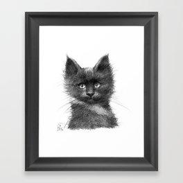 Black Kitten SK135 Framed Art Print