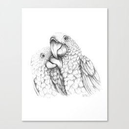 Macaw Pair In Love Canvas Print