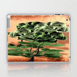 WILD IRISH ROSE - 051 Laptop & iPad Skin