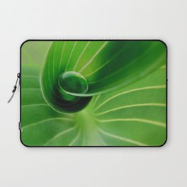 Leaf / Hosta with Drop (2) Laptop Sleeve