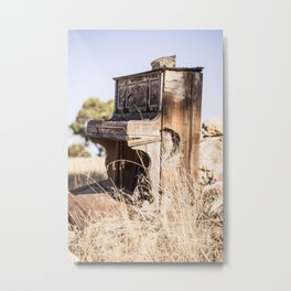 Music in the Meadow Metal Print