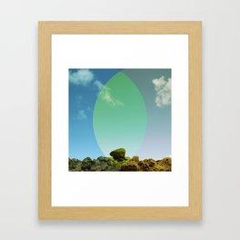 Garden of the Gods (3) Framed Art Print