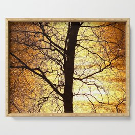 Tree Silhouette At Sunset #decor #society6 Serving Tray