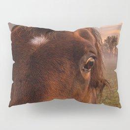 horses eye Pillow Sham