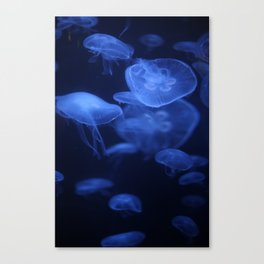 Jellyfish Glowing in Blacklight Photo Print 2 Canvas Print