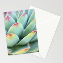 Succulent Zoom Stationery Cards