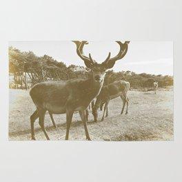 Deer Family Rug