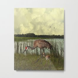 Florida Sandhill Crane and Baby Metal Print