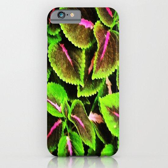 Coleus iPhone & iPod Case