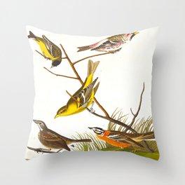 Arkansaw Siskin Bird Throw Pillow