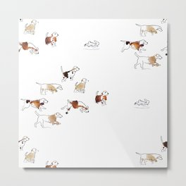 Beagles hunting Metal Print