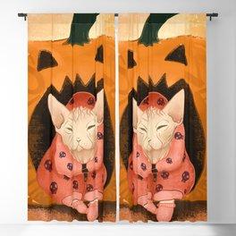 Sweater Weather - Sphynx Cat in a Skull Sweatshirt  - Pumpkin Blackout Curtain