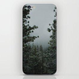 Backwoods Winter: Ponderosa Pines, Washington iPhone Skin
