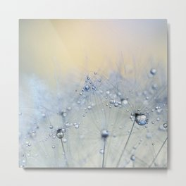 ice blue dandelion Metal Print