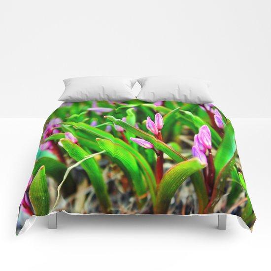 Spring Beginnings Comforters