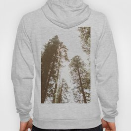 Rise Up to Great Heights Hoody