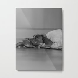 Please, play with me Metal Print