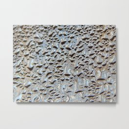 Morning condensation Metal Print