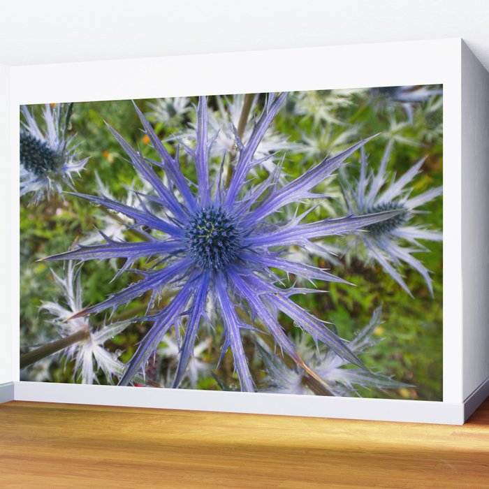 A thistle with style Wall Mural