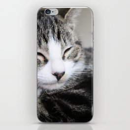 Kitty! iPhone Skin