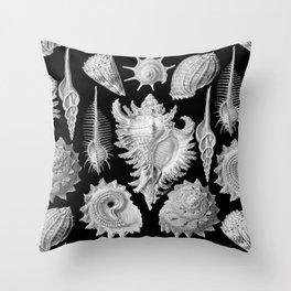 Black and White Beach Shells Throw Pillow