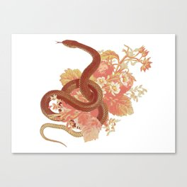 Sweet Something Canvas Print