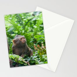 Pair of pygmy monkeys sitting in green grass. Shallow depth of field Stationery Cards