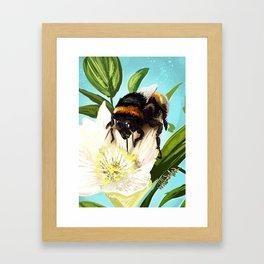 Bee on flower 5 Framed Art Print