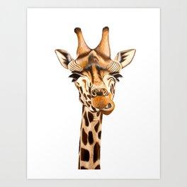 Giraffe painting. White Background Art Print