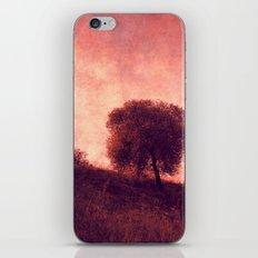 solitary iPhone & iPod Skin