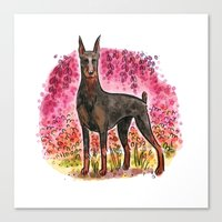 doberman Canvas Prints featuring Doberman by Renee Kurilla