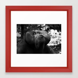 MACHO Framed Art Print
