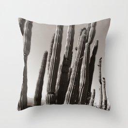 Tucson by Heidi Appel Throw Pillow