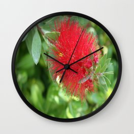 Beautiful Bottle Brush Flower With Garden Background Wall Clock