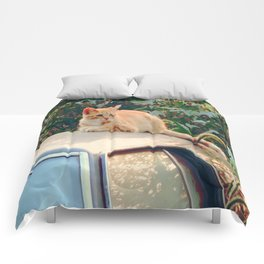Cat Sunbathing  Comforters