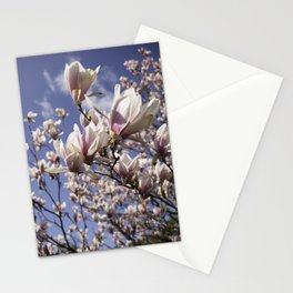 Magnolia Blossoms Shiver Against A Chill Wind Stationery Cards