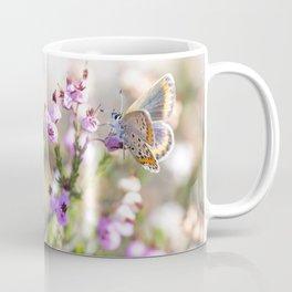 "Female butterfly ""Plebejus argus"" Coffee Mug"
