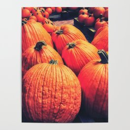 Pumpkins on a Pallet Poster