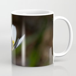 Blurred Mayflower Coffee Mug