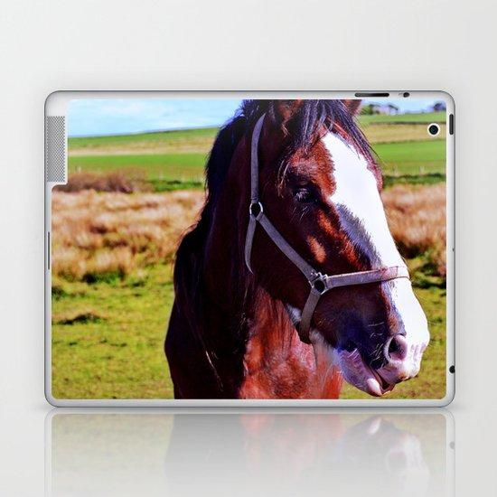 Scottish Clydesdale Laptop & iPad Skin