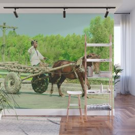 horse by Antor Roy Wall Mural
