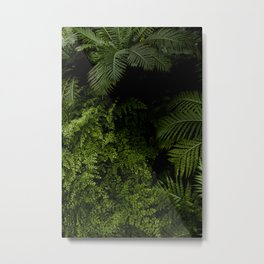 Tropical jungle. Metal Print