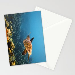 Caribbean Turtle Stationery Cards