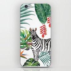 Nature Zebre pattern iPhone & iPod Skin