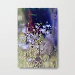 Purple flowers from a garden in Sweden Metal Print